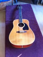 BC Rich acoustic 12 string