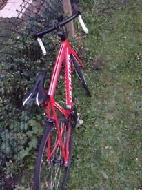 Specialized Langstar