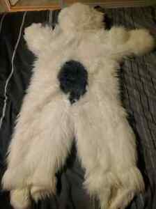 English sheep dog Costume chien Berger anglais Gatineau Ottawa / Gatineau Area image 3