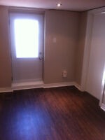 1 B/R apartment**all inclusive**newly renovated