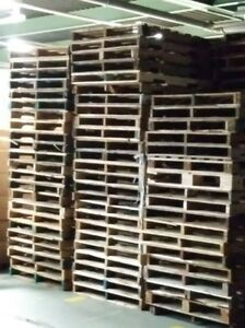 Free quality Pallets ( Wood ) available