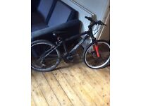 Junior Rock Rider Mountain Bike