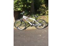 Kids Bike in Immaculate Condition 10-12yrs