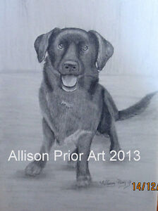 Turn your photo into a beautiful drawing starting at $50.00 St. John's Newfoundland image 7
