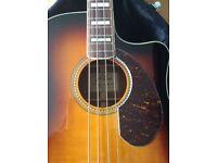 Fender Kingman electro acoustic Bass guitar As New Condition £350.00