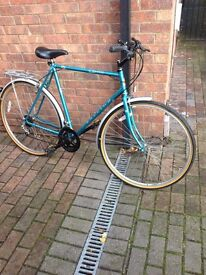 Time warp Classic Raleigh Pioneer .