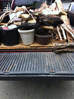 Junk Removal with Great Low Price !!!