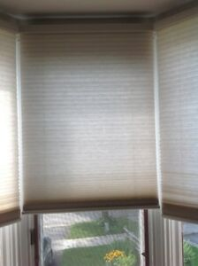 Levelor Cordless Blinds