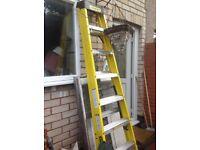 Ladders (STANLEY Swingback Fibreglass stepladders