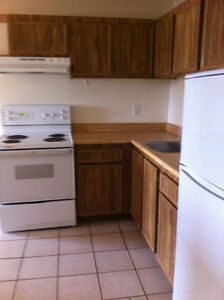 Great Apartment for sale in Logan Lake Prince George British Columbia image 4