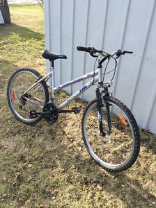 1 Girls Bike 1 Men's Bike $40.00 Each