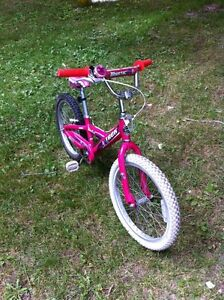 Girls Trek Mystic bike $100