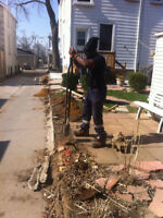 Quincy's Post hole & Bullards installation services647.717.4687