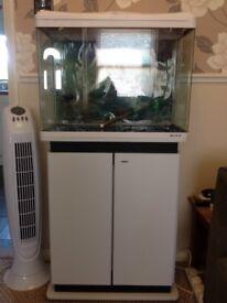 Boyu fish tank and cabinet set up
