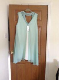 Wallis dress ( new )