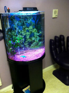 LOOKING TO PURCHASE A HALF MOON AQUARIUM 33-50GAL