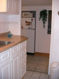 Quiet 1 bedroom apartment in owner's quiet house near downtown London Ontario image 7