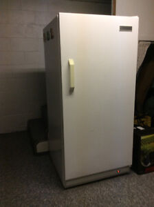 Stand up freezer-good condition