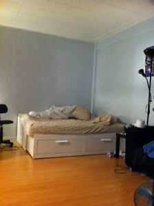 Looking for quiet student (McGill ghetto) - Furnished