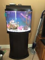 Fish tank and with stand