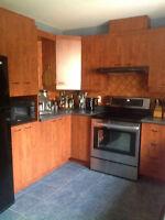 Armoires de cuisine, comptoir et hotte