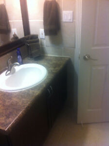 Experienced Contractor - flooring, tiling, backsplashes and more London Ontario image 1