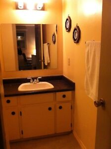 Large Clean Room 5 minutes from the Downtown London Ontario image 5