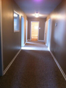 Co-Share 2 bedroom apt - McDonald Dr. & Portugal Cove Rd. area