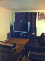1Br apt close to Universities and Downtown Kitchener