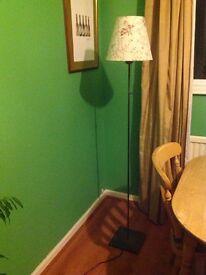 FREE Floor lamp in pewter