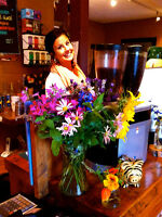 15-20 hr./week at cute café in Chelsea beside Gatineau Park