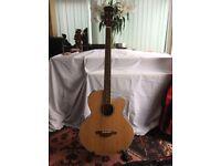 Freshman FA1BN Electro Acoustic Guitar