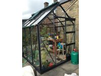 6 x 8 high eaved greenhouse