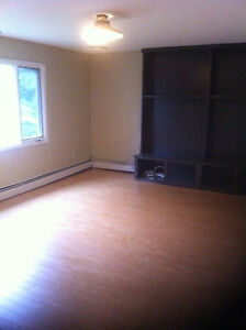 Spacious 3 Bedroom house (upper) for rent
