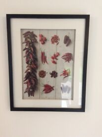 Black Picture frame with picture of Red Chillies