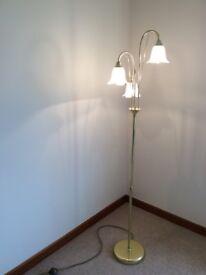 Standard light and roof light