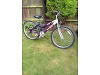 "Girls Raleigh Krush mountain bike 24"" wheels £30ono"