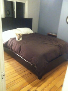 Room in Great Place - North End Halifax - Oct 1st