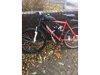 Bike with engine