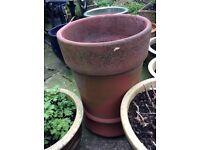 Terracotta Chimney Pot Plant Pot