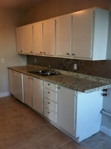 2 BDRM completely renovated with insuite washer/dryer dishwasher