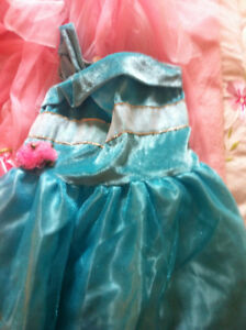 Princess dress up costumes plus Ballet outfits and chest