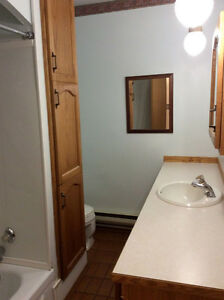 RENTED Large Spacious and Bright Adult Building Moose Jaw Regina Area image 3