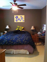 3+ bedroom townhouse in Armstrong