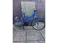 Ladies / teenagers Apollo XC26 mountain bike