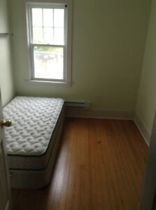 EXCLUSIVE  FOR FEMALE , ROOM TO RENT ON QUINPOOL ROAD.