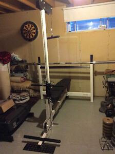 Reduced Northern Lights Olympic Workout Gym Bench $375 or BstOfr