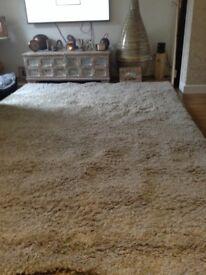 200x290 champagne colour rug excellent condition £70
