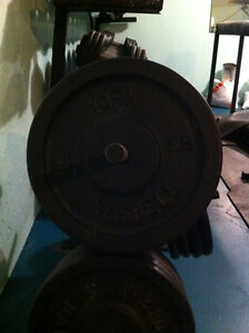 Cast iron weights for sale Kawartha Lakes Peterborough Area image 1