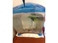 Complete Fish Tank -just add fish!